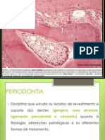 2. Histologia PERIODONTIA.pdf