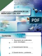 70308099-Planta-de-Produccion-de-Cal-Hidratada-y-Cal.pptx