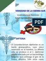 fenilalanina y nutricion.pptx