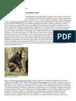 Chimp Mating Habits