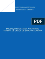 CTAADOCUMENTOS3PRODUCAODEETANOLAAPARTIRDEFARINHADEGRAOSDESORGOSACARINOFL06795.pdf
