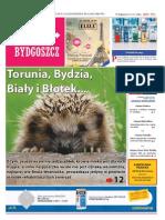 Poza Bydgoszcz nr 30