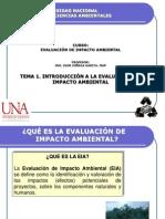 INTRODUCCION A LA EIA.pdf
