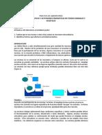 guia imprimirr.pdf
