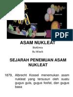 Asam Nukleat 2