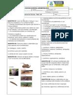 Avaliação Bimestral de ciências- 7º.doc