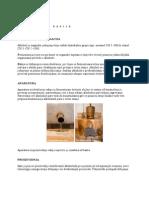 Pecenje    rakije.pdf