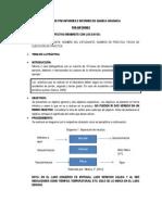 FORMATO DE PRE.docx