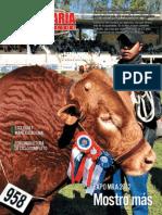 PECUARIA Y NEGOCIOS - AÑO 9 - NUMERO 96 - JULIO 2012 - PARAGUAY - PORTALGUARANI