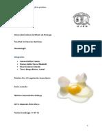 practica coagulacion de proteinas.docx
