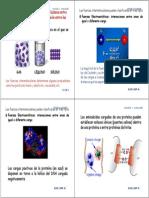 CLASES_FQCF_2014.pdf