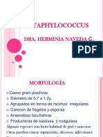 STAPHYLOCOCCUSF.ppt