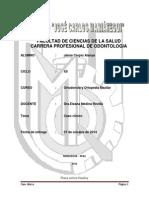 monografia orto.docx