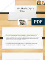 Nutrición en animales exóticos.ppt