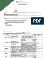 Sílabo-Cronograma de Actividades  (Prof. Milan Pavlich).pdf