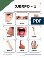 Bingo fotos el cuerpo.pdf