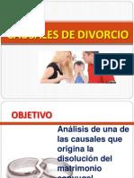 CAUSALES DE DIVORCIO.pptx