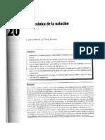 1.Biomecánica de la natación - Dr. Salvador Llana Benlloch y P. Pérez Soriano.pdf