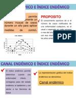 DIAPOS EPI CANAL ENDEMICO.pptx