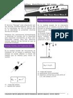 FISICA ENERGIA 2014 (BRYCE).pdf