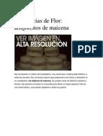 pastelitos de maicena.docx