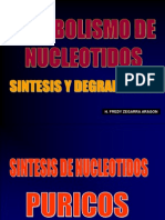 METABOLISMO DE NUCLEOTIDOS 2013.ppt