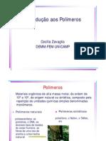 introdução aos polímeros.pdf