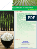 23rd October,2014 Daily Global Rice E-Newsletter by Riceplus Magazine