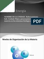 PPt 3  Ecosistemas energia .ppt