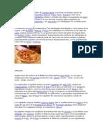Las salchipapas.docx
