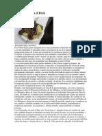El anticucho en el Perú.docx