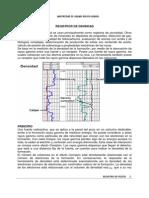 registros de densidad .pdf