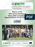Report on the 2013 Annual Meeting of Vision 2020 Committees - Representatives for the Caribbean