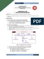 SS - Lab02b - Modelo de Poblacion Peruana.pdf