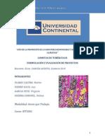 GOMITAS DE TUBERCULOS.pdf