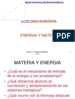 3_ Clase ENERGIA C BIOGEOQUIMICO.ppt