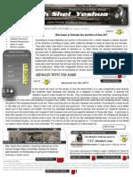 0111 newsletter jan 2011