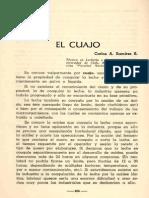 EL CUAJO.pdf