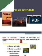 os-sectores-de-actividade.pdf