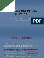 20..PERFILES CRIMINALES.ppt
