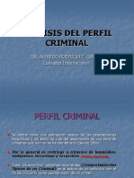 20..PERFILES CRIMINALES.ppt