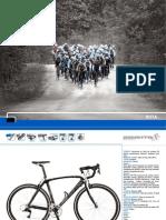 d_RUTA_BENOTTO_2011.pdf