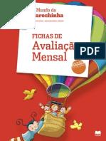 Fichas de avaliação Estudo do meio 2º ano.pdf