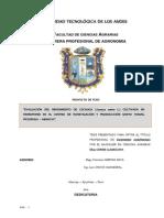 TESIS LECHUGA HIDROPONICO - Nuevoo05-08-14.docx