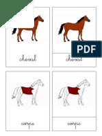 cheval.pdf
