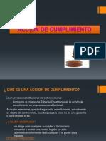 accion de cumplimiento (2).pptx