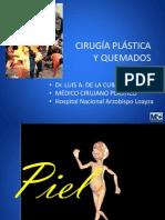 QUEMADOS.pptx