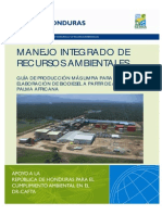 Guia_de_P+L_de_Biodiesel_11 _agosto_08.pdf