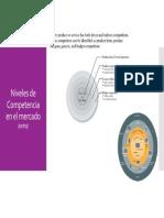 Niveles de Competencia de Mercado.pdf