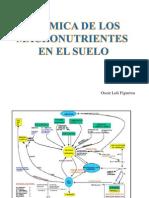 3.valle grande dinamica de los macronutrientes en el suelo.pdf